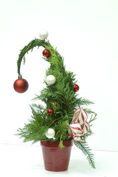 Whoville mini Christmas tree. Repinned from Vital Outburst clothing vitaloutburst.com