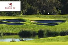$69 for 18 Holes with Cart, Range Balls PLUS a $10 Lunch Credit and Two Sleeves of Titleist Velocity Golf Balls at Hammock Bay #Golf and Country Club at The Marco Island Marriott Golf Resort in Naples ($147 Value. Includes Tax. Expires October 31, 2014!)  https://www.groupgolfer.com/redirect.php?link=1sqvpK3PxYtkZGdkaH6k