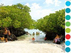 Best Things To Do Aruba Tourism And Vacations 21 In Noord Tripadvisor Active N Abc S Pinterest Vacation Trip