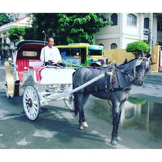#transport of #Manila the #horse and #carriage and #Jeepney. I was pleased to see these #horses in very good condition. #animalwelfare #manila #philippines #itsmorefuninthephilippines #travel #travelphotography #pic #photography #nikon :smiley::heart::ear