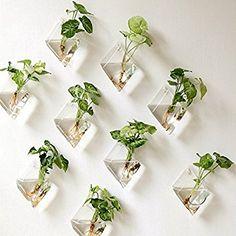 Amazon.com: Mkono 2 Pack Wall Hanging Plant Terrarium Glass Planter, Diamond: Patio, Lawn & Garden