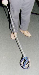 Invisible dog leash