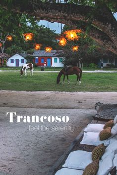 Be a part of the stunning beauty in Trancoso, Brazil | heneedsfood.com