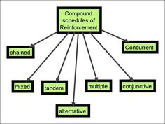 Compound Schedules of Reinforcement  - repinned by @PediaStaff – Please Visit ht.ly/63sNtfor all our ped therapy, school & special ed pins