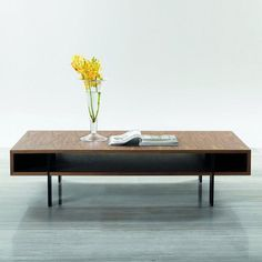 Modrest Stilt Rectangle Coffee Table | from hayneedle.com