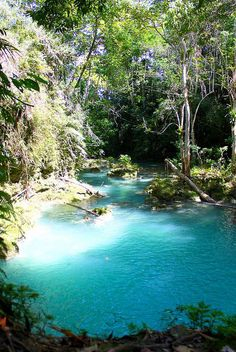 Perfectly turquoise waters of the Irie Blue Hole near Ocho Rios, Jamaica. Photo by Christophe A. Frochaux. #royalcaribbean #caribbean