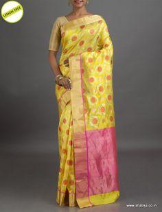 Lemon Tree Circles Bound in Design #ChanderiSilkSaree