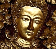 However many holy words you read, however many you speak, what good will they do you if you do not act on upon them.~Buddha