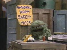 I loved Sesame Stree as a child, but sadly my own son missed out since I found elmo and zoe so distasteful.  I'll make it up to my grandkids, if I have any.  There are so many great Muppets it's hard to choose my favorite , but Slimey the Worm and the Twiddlebugs are a tie, closely followed by Grover.  Many say I remind them of Cookie Monster.  Guard your cookies when I'm around.