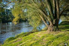 La Loire à Pouilly sous Charlieu.