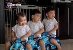 Yang nonton The Return of Superman pasti tahu. Cute Boys, Cute Babies, Song Il Gook, Triplet Babies, Superman Kids, Man Se, Song Daehan, Song Triplets, Dream Baby