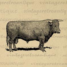 Printable Devon Bull Cow Digital Download Farm Animal Graphic Image Vintage Clip Art Jpg Png Eps Print 300dpi No.3546 @ vintageretroantique.com #DigitalArt #Printable #Art #VintageRetroAntique #Digital #Clipart #Download