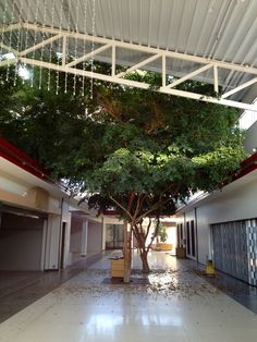 Center Point MarketPlace: Stevens Point, Wisconsin  #dead_mall #abandoned #empty
