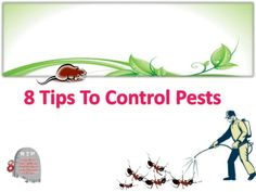 8 Tips To Control Pests by Stella Jean via slideshare
