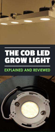 Have you heard about COB LED grow lights and want to know what the fuss is about? Look no further - this guide to COB LEDs is everything you need. Aquaponics Greenhouse, Backyard Aquaponics, Aquaponics Fish, Aquaponics System, Hydroponics, Hydroponic Systems, Indoor Vegetable Gardening, Vertical Farming, Grow Room