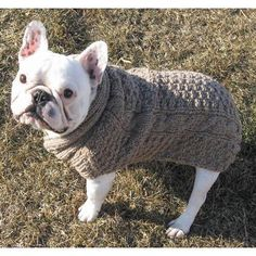 Have to have it. Chilly Dog Pink Cable Dog Sweater - $29.99 @hayneedle