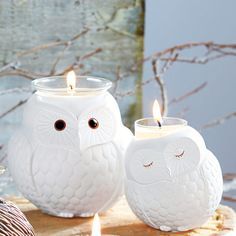 P91627S - Nature's Love™ by PartyLite Famille Chouette