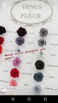 Maria Theresia, Bolshoi Theatre, Rolls Royce, Lilac, Buffet, Hot Pink, Spanish, Crochet Necklace, Aqua
