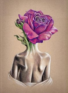 Mollie rose drawing - Kate L. Power