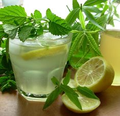 Old Fashioned Lemon Balm And Lemon Verbena Lemonade Syrup Recipe - a triple lemony threat. I mean treat! Lemon Verbena Recipes, Lemon Balm Recipes, Lemon Verbena Tea, Lemon Balm Tea, Syrup Recipes, Herb Recipes, English Food, Edible Flowers, Yummy Drinks