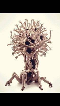 Dancers pose as tree stature