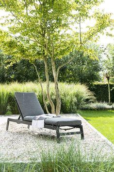 Backyard Trees, Garden Design, House Design, Dog Runs, Garden Inspiration, Garden Landscaping, Sun Lounger, Outdoor Decor, Outdoor Furniture