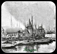 Bergen 12th Century, Capital City, Bergen, West Coast, Norway, Medieval, Survival, History, Painting