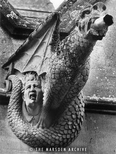The History of Gargoyles & Grotesques (Facts, Information, Pictures) - Going To Tehran Gothic Gargoyles, Architectural Sculpture, Church Architecture, Architecture Details, Old Churches, Angels And Demons, Green Man, Stone Carving, Lion Sculpture