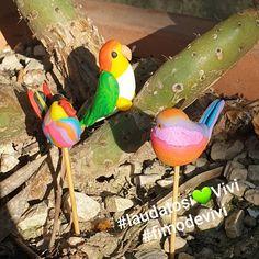 """0 mentions J'aime, 0 commentaires - Virginie Dufour Thiriez (@fimodevivi) sur Instagram: """"Avec Fanny,  nous vous partageons notre détente de l'après-midi 🦜🐦 Un Caïque 🥰 Une mésange de…"""" Dufour, Parrot, Animals, Instagram, Polymer Clay Jewelry, Virginia, Parrot Bird, Animales, Animaux"""