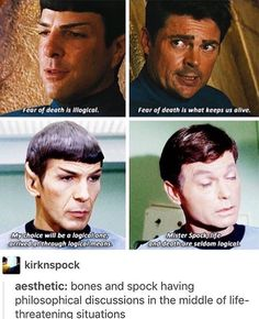 Fun for the day! Spock and Bones Star Trek aesthetic ;)