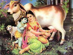 Here's a collection of beautiful pictures of Lord Krishna... Happy Jhanmashtami | Gokulashtami.