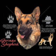 Womens TANK TOP German Shepherd Choose Size and Color 4687