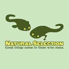 Women's Natural Selection T-shirt - Small Fit - FINAL SALE :: Clearance :: the mental_floss store