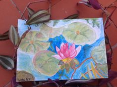Acuarela. Watercolors. Nenufar. Nenuphar