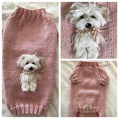 My New Handknit Selfie Sweater from England!  Thank You @paulabunkall You are Amazing!!!  #chiwowow #lifeoffebe #selfiesweater #lovemypuppy #maltipoolove #maltipoolife #handknitpuppysweater #inthepink #puppyeastersweater