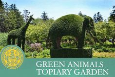 Green Animals Topiary Garden - Landscape NotesLandscape Notes