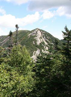 Montée finale, mont Gothics, Adirondacks, New-York, août 2016 Mount Rainier, Gothic, Photos, Mountains, Usa, Nature, Travel, Upstate New York, Goth