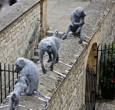 Baboons in the Tower. Realistic animal sculpture by British artist Kendra Haste Chicken Wire Art, Chicken Wire Sculpture, Animal Sculptures, Sculpture Art, Metal Sculptures, Metal Artwork, Tower Of London, Public Art, Les Oeuvres
