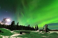 Arctic Circle and Northern Lights Tour from #Fairbanks #Alaska  http://16260.m.viator.com/tour/fairbanks/arctic-circle-and-northern-lights-tour-from-fairbanks/0-5957ARCLIGHT/info.htm #northernlights #northernlight #northernlightsphotos #tour #tourist #tourism #tourisme #holiday #travel #travelblog #travelblogger #traveller #travelblogger #usa #travelingram