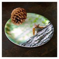 Kurkistus puun takaa! Suloinen orava kuvattu Vantaan Kuusijärvellä kesällä 2015. Siinä se nyt somistaa kotimaisesta koivusta valmistetussa tarjottimessa! Zirbaslife Design.