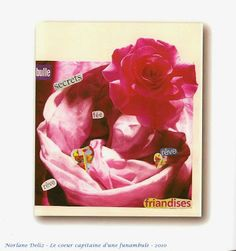 Rêves roses et autres choses futiles - poème illustré extrait de Le cœur capitaine d'une funambule - 2010 - Norlane Deliz