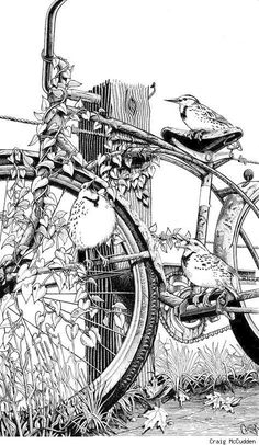 Art by Craig McCudden