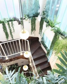 Ideas apartment style house plants for 2019 Living Room Plants, Room With Plants, House Plants, Plant Rooms, Living Rooms, Exposed Brick Apartment, Best Office Plants, Apartment Bathroom Design, Apartment Decorating For Couples