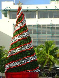 christmas at camana bay in grand cayman 2016
