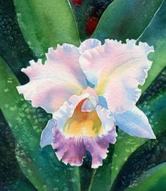 watercolor floral painting by Barbara Fox.