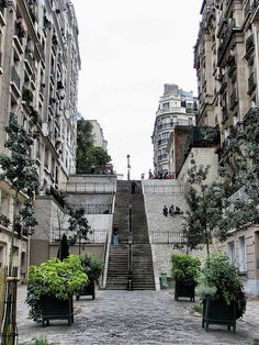 Montmartre Stairs ~