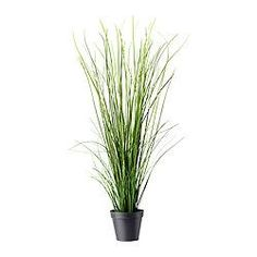 FEJKA Artificial potted plant - IKEA  ----in a taller pot