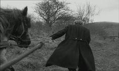 The Turin Horse (2011)  Béla Tarr http://www.400films.com/pelicula/turin-horse