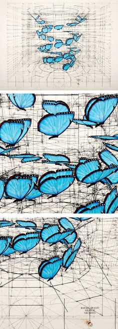 Blue Morpho, Double Helix teams artist Rafael Araujo's unique vision of the natural world with an intricate mathematical framework of vivid color and precise lines.  Blue Morpho, Double Helix was originally created as a pen and ink drawing on canvas with acrylic paint, and is available at The Colossal Shop exclusively as a premium archival print. #colossal