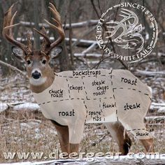 Responsible hunting, game management and wildlife conservation are important aspects of any wild game hunting, but many find the challenge of deer hunting to be the most challenging. Here are some ideas and deer hunting tips to make y Whitetail Deer Hunting, Quail Hunting, Deer Hunting Tips, Hunting Guns, Turkey Hunting, Archery Hunting, Deer Hunting Blinds, Hunting Stuff, Duck Hunting